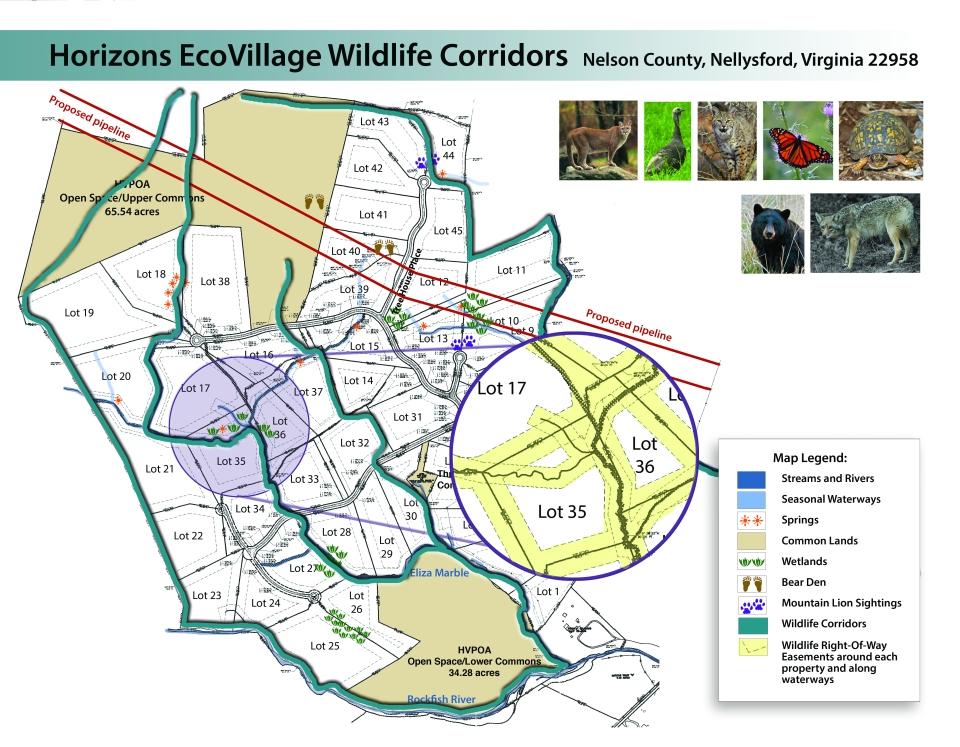 wildlifemap